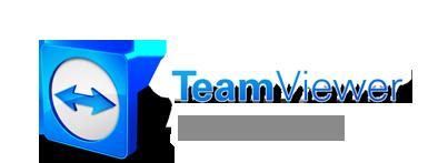 Download - TeamViewerQS.exe